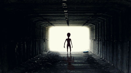 Oxford prof 'seeks evidence' for theory that alien hybrids have arrived and will save civilization